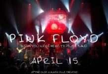 YQGrocks | Pink Floyd Tribute Returns To Windsor For Diabetes Fundraiser